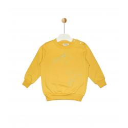 """Ursa Major"" Sweatshirt"